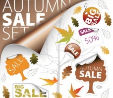 秋季销售标签矢量图标 枫叶 树叶标签图片