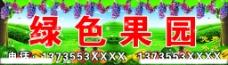 绿色果园图片
