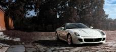 法拉利 2010款 瓷面版 跑车图片