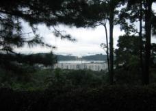 山下的太平洋图片