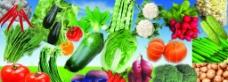 新鲜的蔬菜水果图片