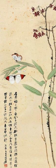 青城异卉图片