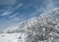高山雪境图片