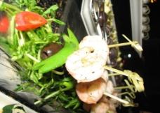 基围虾图片