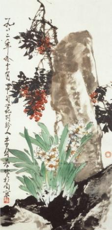 水仙天竺图片