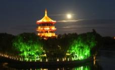中秋树间塔浮月图片