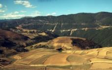 香格里拉的田野图片