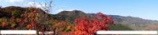 秋染香山图片