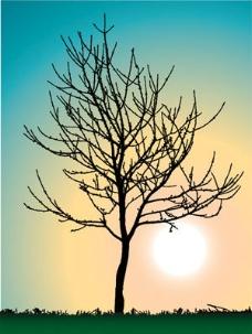 树景色插画矢量