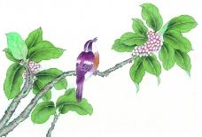 工笔花鸟0017