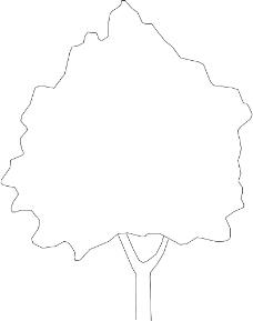装饰素材0238
