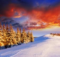 冬季 雪景 日落图片