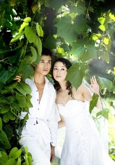 婚纱样片 绿色情缘图片