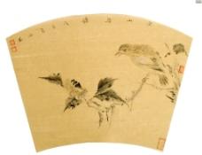 空山鸟语图片