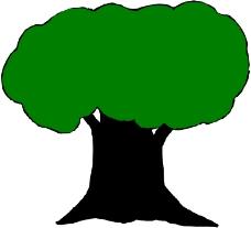 树木1363