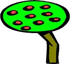 树木1616