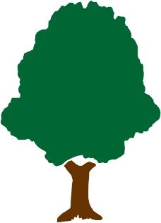 树木1504