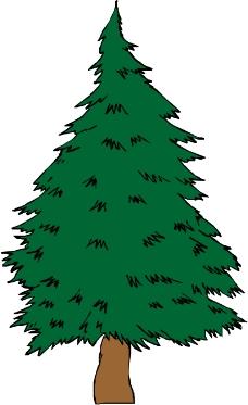 树木1432