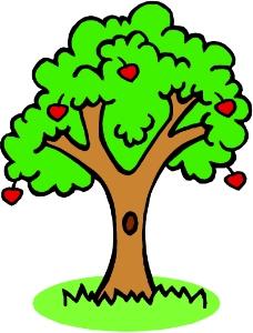 树木1595