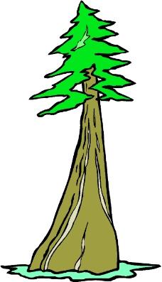 春天 大树发芽 卡通