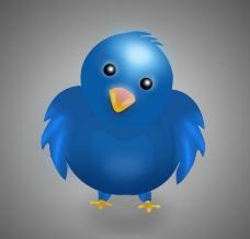 蓝色小鸡图片