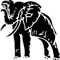野生动物4138