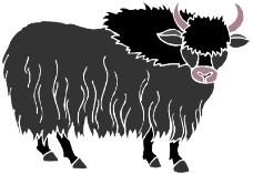 野生动物4363