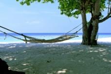 海边吊床图片