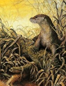 动物花鸟西洋画(有点模糊)图片
