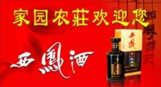 西鳳酒圖片