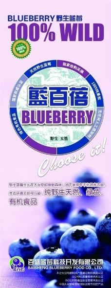 野生蓝莓展架图片