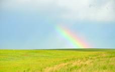 草原之光图片