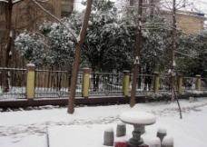 下雪天图片