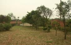 小学校园图片