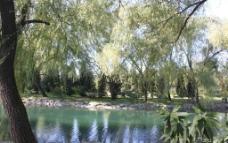 颐和园初秋图片