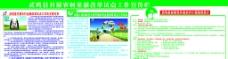 中国人寿保险公开栏图片