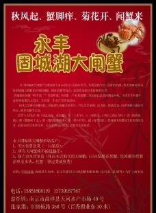 固城湖大闸蟹宣传单图片
