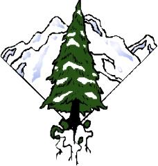 树木1144