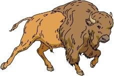 野生動物4036
