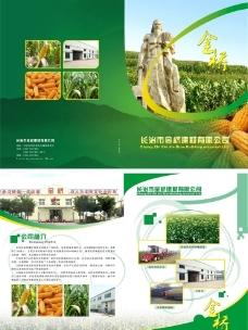 金桥粮食物流画册折页图片
